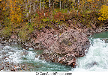 Rock in stream flow of mountains river fall season
