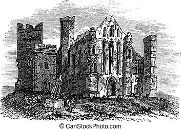 Rock of Cashel or Cashel of the Kings or St. Patrick's Rock, Located at the town of Cashel, in South Tipperary county, Ireland vintage engraving. Old engraved illustration of rock of cashel with ruined buildings and ancient cemetery.