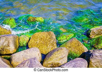 Rock stones in clear water