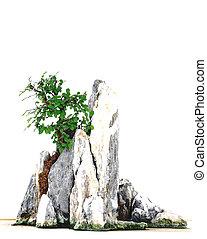 Rockery Bonsai