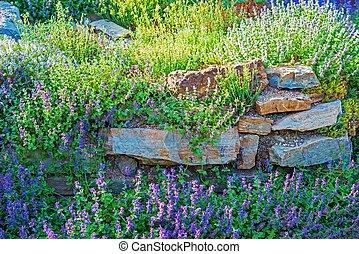 Rockery Garden Closeup