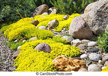 rockery rock garden