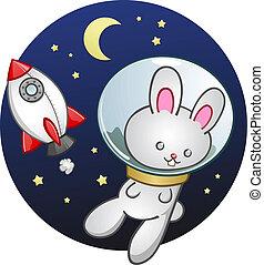 Rocket Ship Bunny Rabbit Cartoon
