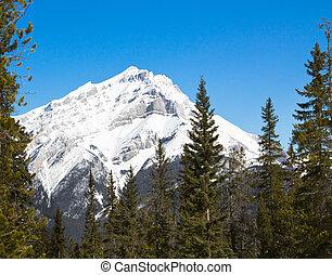 rockies, cascada, canadá, montaña