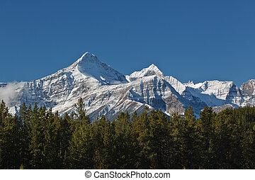 rockies, snowcapped, canadiense