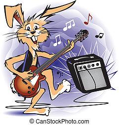 rockin, conejo