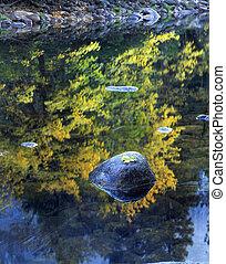 Rock&Leaf Merced River