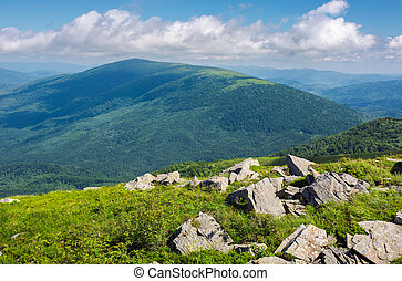 rocks among the grass on a hillside. mountain in the...