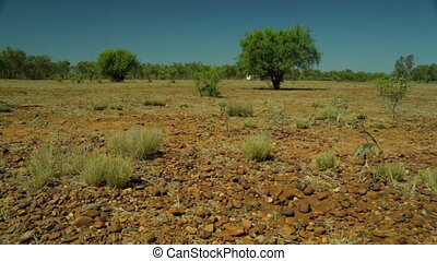 Rocks and bushes in the outback as cars drive away - A long...