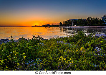 Rocks and bushes on a jetty at sunset, at Smathers Beach, Key We