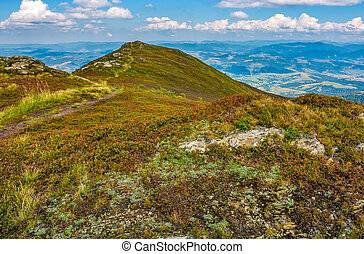 rocks and footpath on high mountain meadow - rocks and...