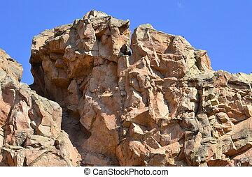 Rocks at Sun City