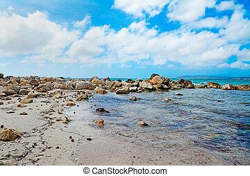 rocks by the sea in Alghero