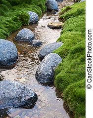 Rocks in a Creek