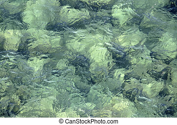 Rocks in shallow water