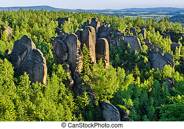 Rocks in the forest