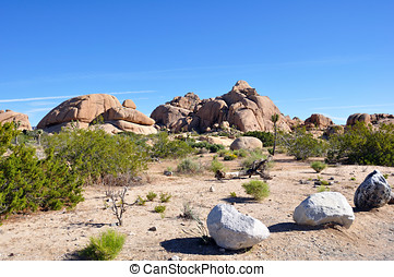 Rocks in the Mohave