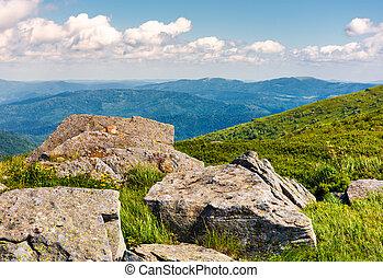 rocks on the edge of a grassy hillside. yellow dandelions...