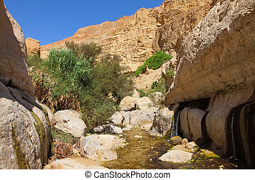 Ein Gedi nature reserve - rocks, streams and small...
