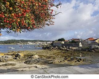 Rocky Abilleira beach in Arousa Island