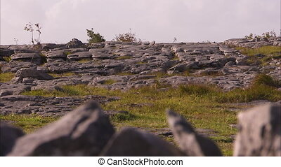 Rocky and grassy terrain in Ireland - Very rocky and grassy...