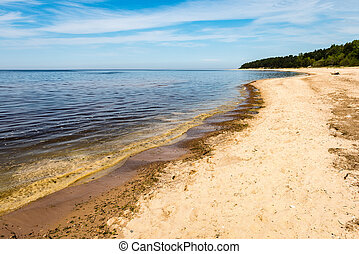 rocky beach in the baltic sea