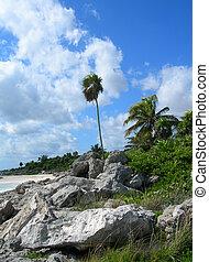 Rocky  Caribbean beach
