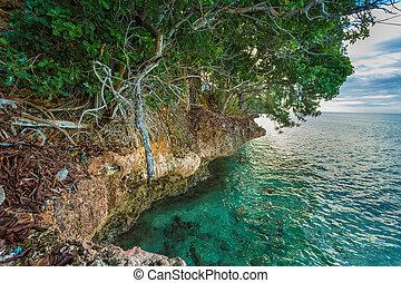 Rocky coast of Prison Island