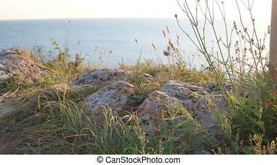 Rocky coast of Sea of Azov in daytime. Dry grass on the wind