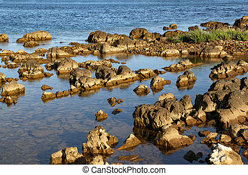 Rocky coast on the Adriatic in Croatia