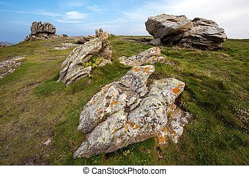 Rocky coastline and meadow