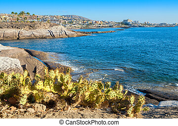 Costa Adeje. Tenerife. Canary Islands - Rocky coastline of...