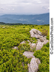 rocky formation on a grassy slope in mountains