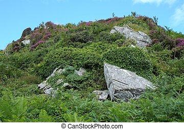 Rocky hilltop