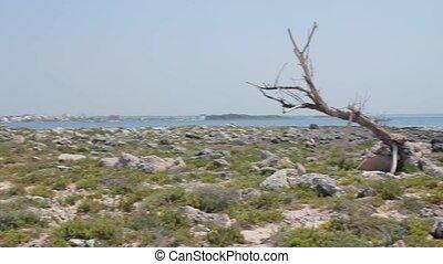 Rocky island and sea