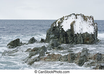 Rocky island in the Southern Ocean.