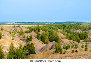 Rocky landscape, green forest and blue sky