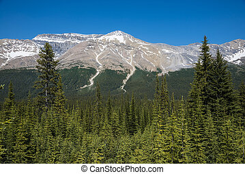 Rocky mountain landscape, Banff National Park