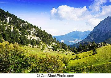 Rocky mountain landscape in summer