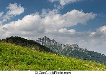 rocky mountain meadow on blue cloudy sky