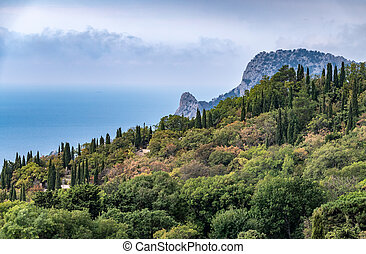 Rocky mountain on sea shore with high green trees on slope