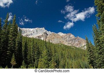 Rocky Mountain Rim