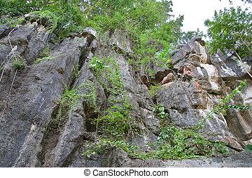 Rocky Mountain. - Rocky Mountain in thailand