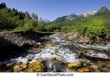 River in the Spring with snow capped mountains in the background