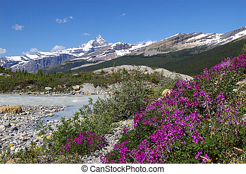 Rocky Mountains A - Wilderness area in the rocky mountains