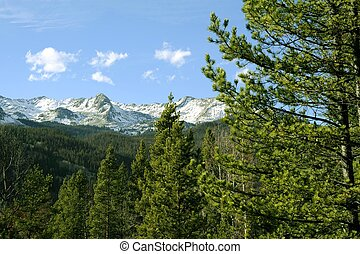 Rocky Mountains of Colorado - Early Summer in Colorado....