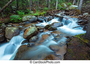 Rocky Mountains River. Small Mountain River Scenery.