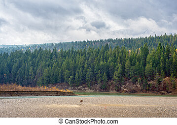 Rocky Moutains and river from the town of Golden in BC,...