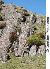 Rocky Pattern on a hillside - Rocky Pattern with bushy...
