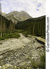A view of a rocky river bed in the Alaskan wilderness